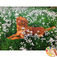 Labrador Portrait in Flower Field 586
