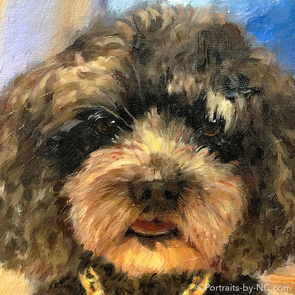 Labradoodle Portrait in Oil