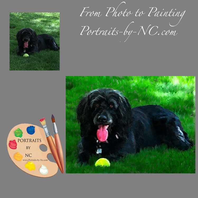Labradoodle Dog Portrait from Photo 476
