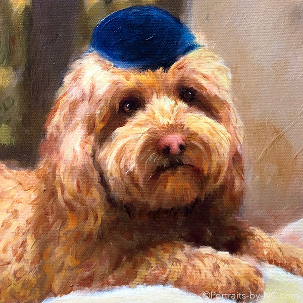 Golden Doodle painting in oil