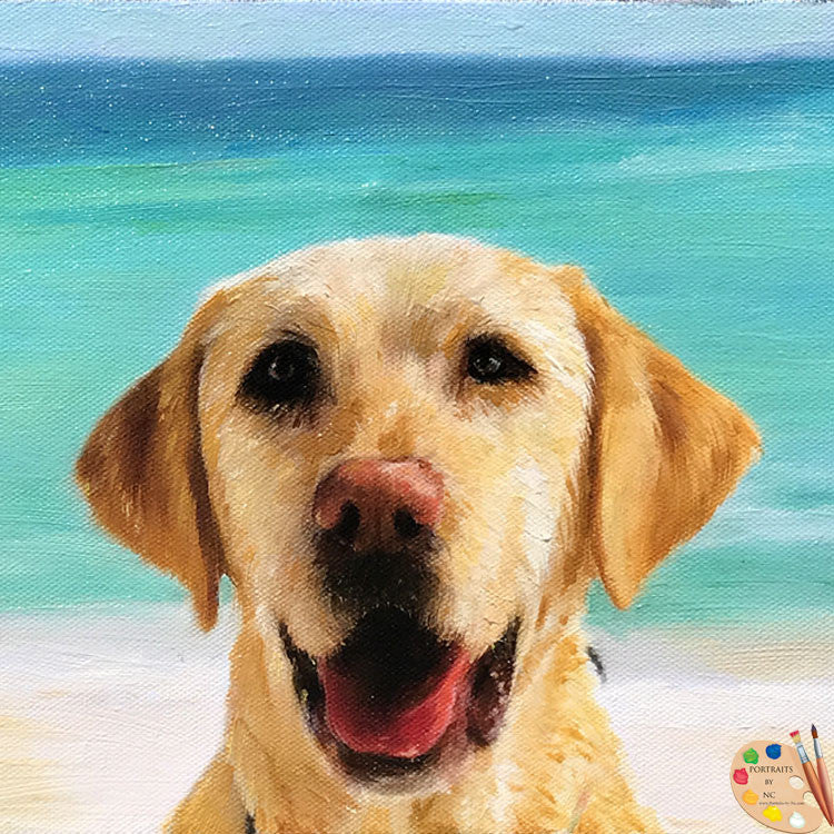 Labrador at Beach Portrait