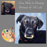 Labrador Portrait from Photo 587