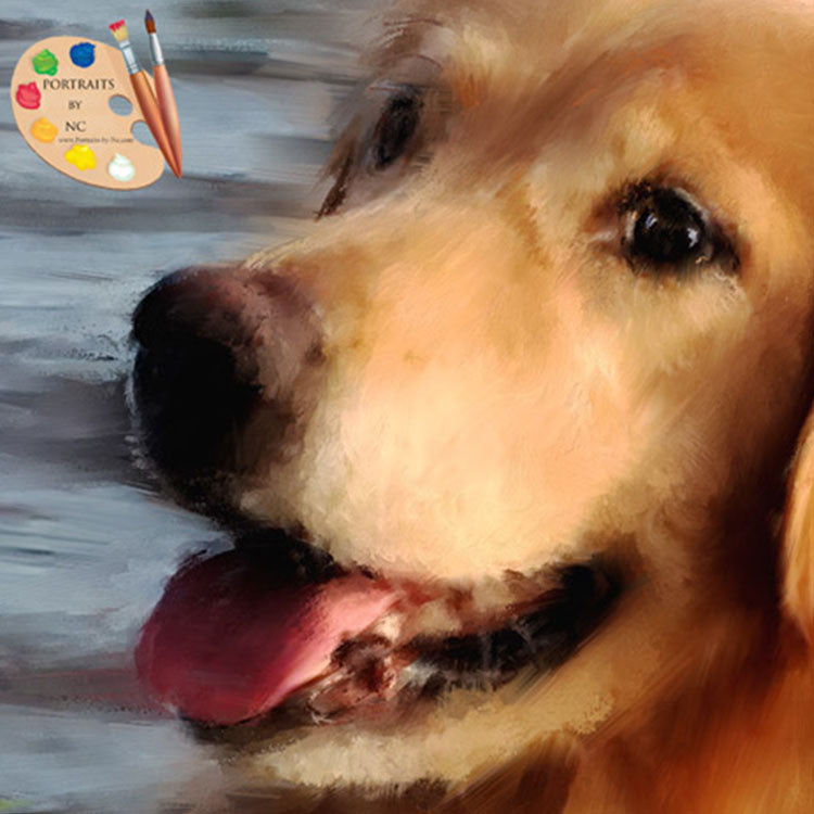 Labrador Retriever Dog Portrait Detail 370