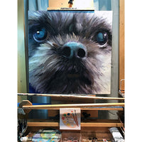 Large Shih Tzu Dog Portrait 564 - Portraits by NC