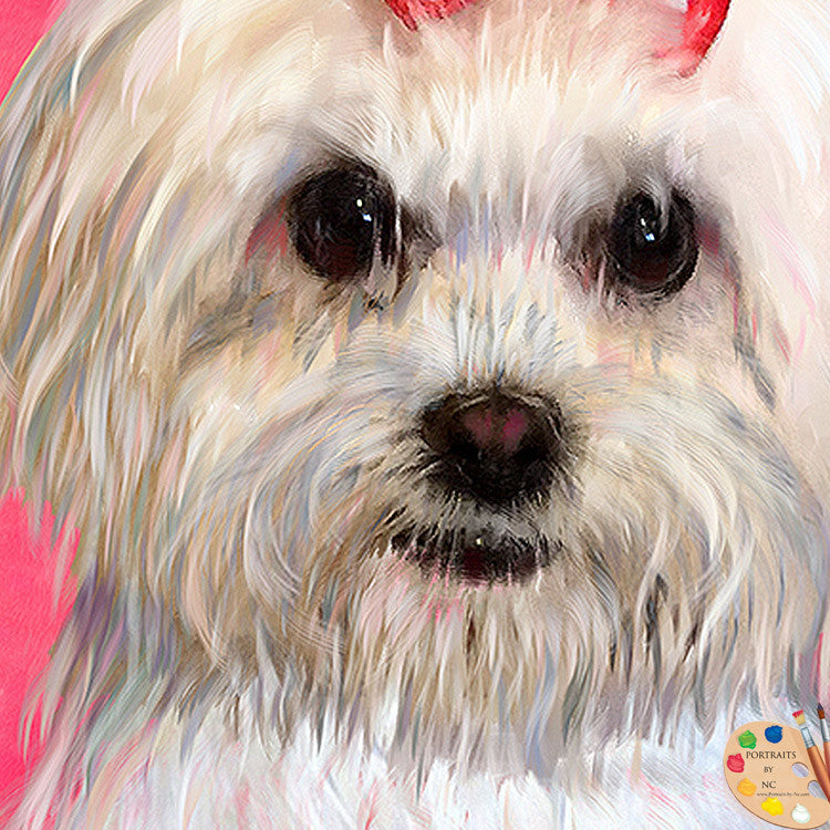 Maltese Dog Portrait 325 - Portraits by NC