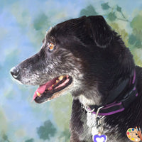 Old Dog Portrait 362 - Portraits by NC