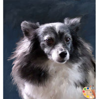 Papillion Dog Painting 284