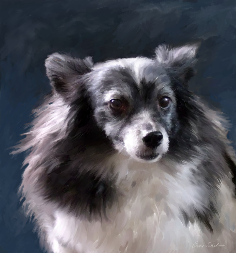 products/papillion-dog-portrait-org.jpg