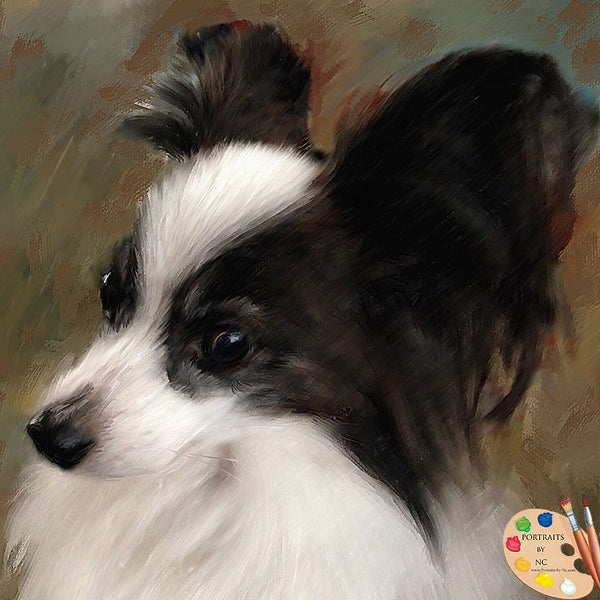 Papillion Dog Portrait 388