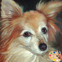 Papillion Dog Portrait 86