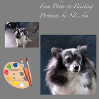 Papillion Dog Portrait from Photo 284
