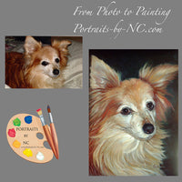 Papillion Dog Portrait from Photo 86