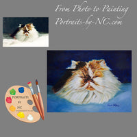 Persian Cat Portrait from Photo 187