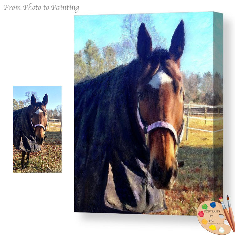 Equine Portraits on Canvas