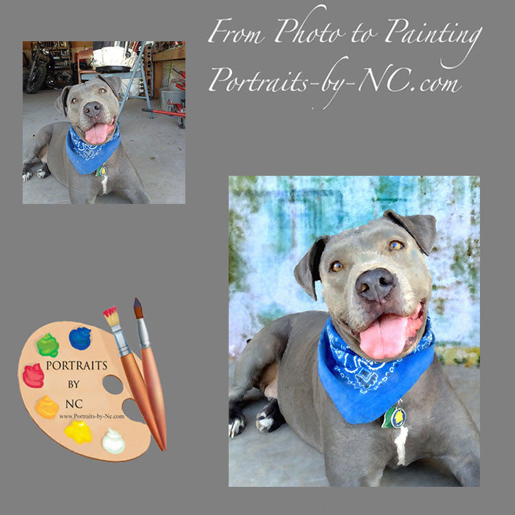 Pit Bull Portrait from Photo 353
