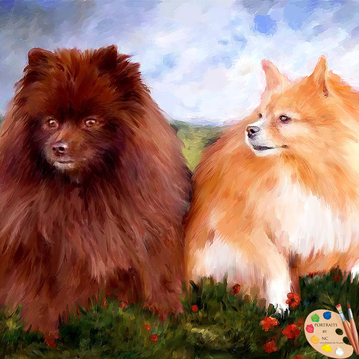 Pomeranians Dog Portrait 507