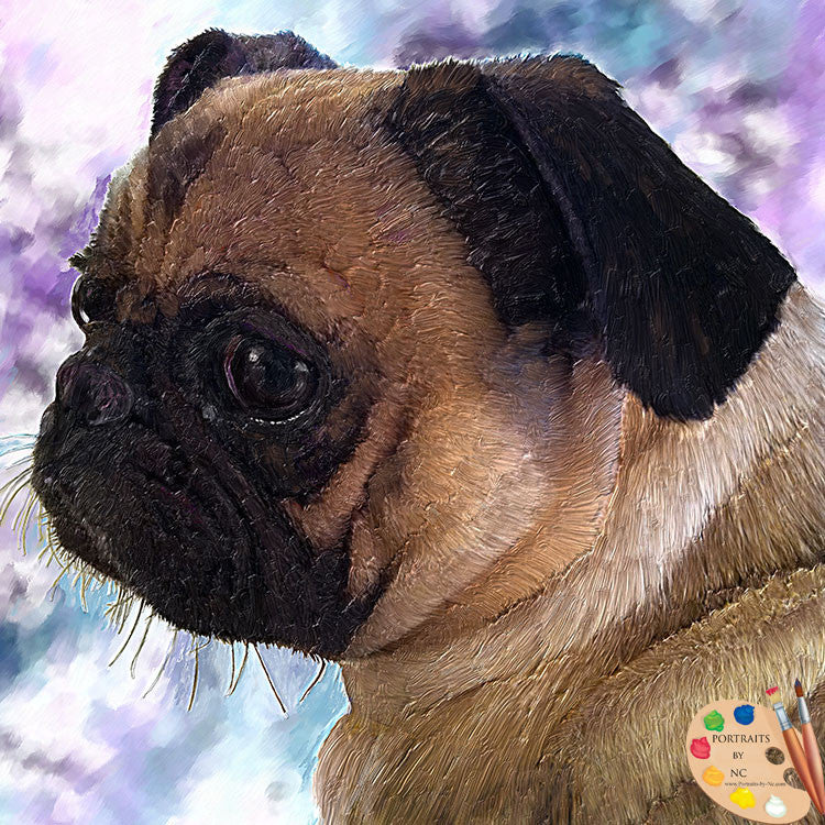 Pug Dog Portrait 382