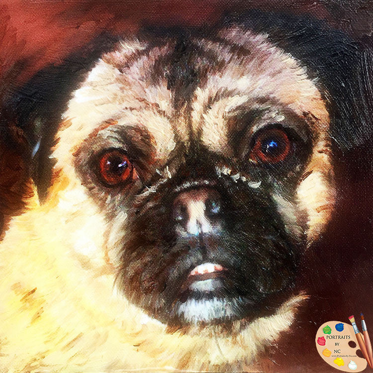 products/pug-portrait-470.jpg
