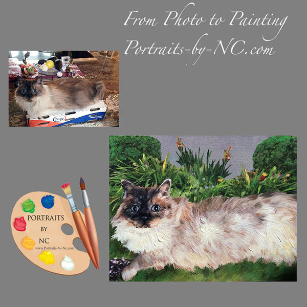 himalayan cat portrait from photo