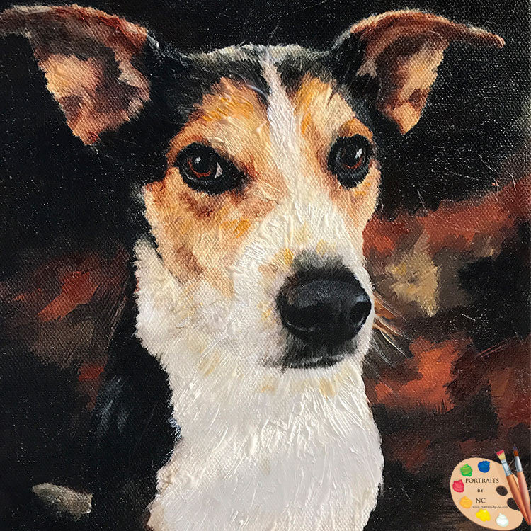 Rat Terrier Dog Portrait 493
