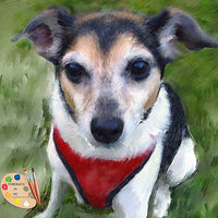 Rat Terrier Portrait 392