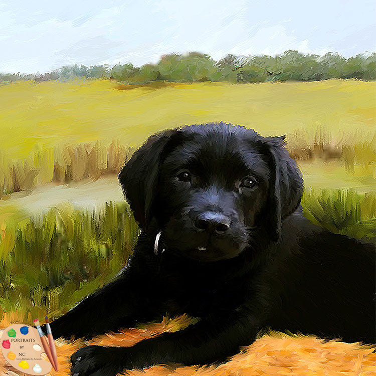 products/retreiver-puppy-517.jpg