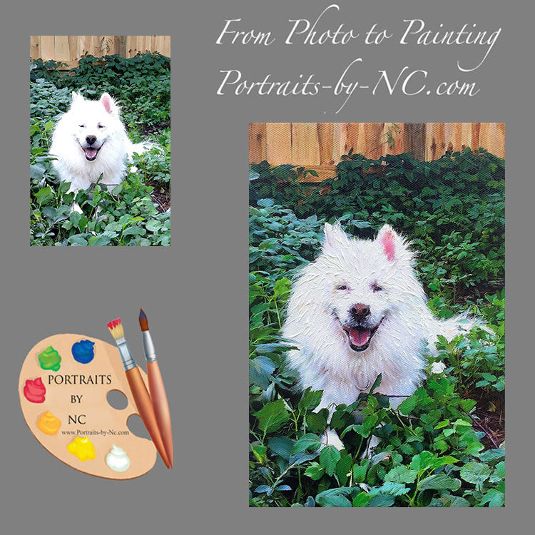 Samoyed Dog Portrait from Photo 467