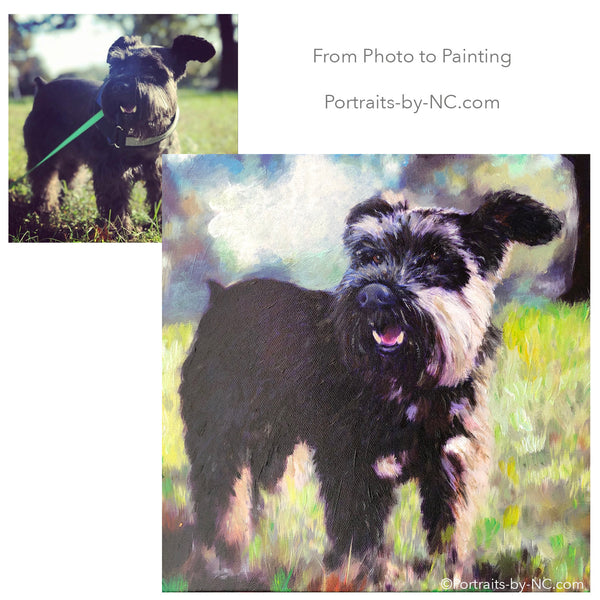 Schnauzer Oil Painting from Photo