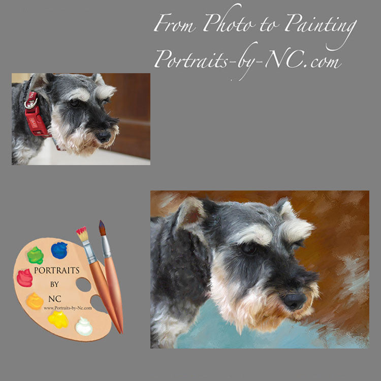 Schnauzer Dog Portrait from Photo 323