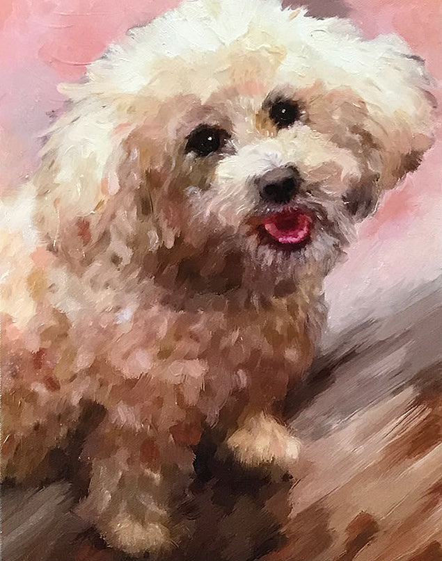 products/schnoodle_master_canvas.jpg