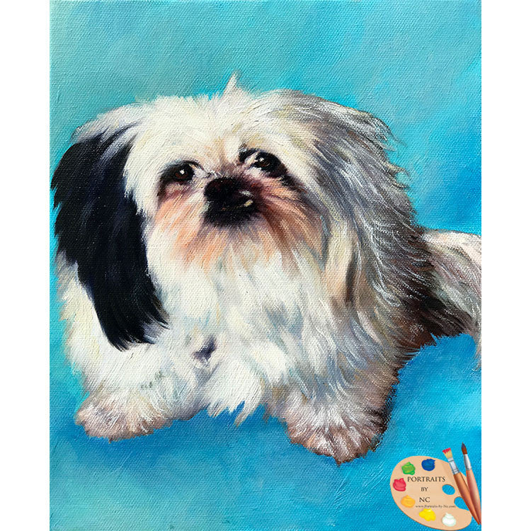 Shih Tzu Dog Painting 568