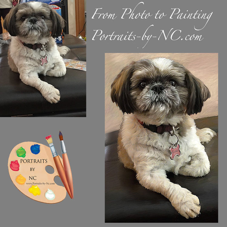 Shih Tzu portrait painting from photo