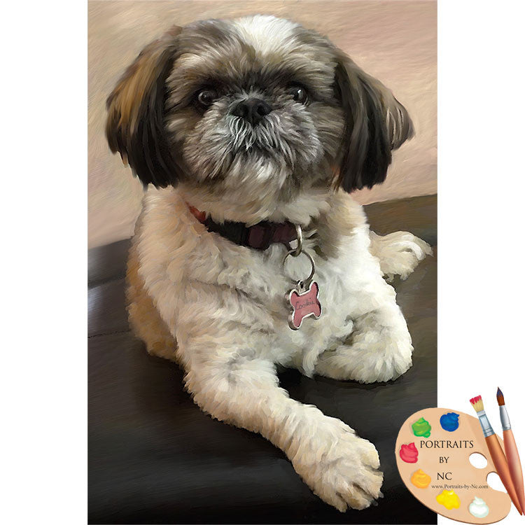 Shih Tzu Oil Painting