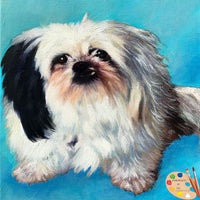 Shih Tzu Dog Portrait 568