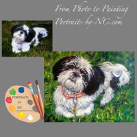shih-tzu-portrait-from-photo-211