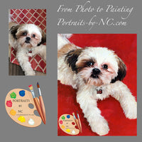 Shih Tzu Pet Portrait from Photo 402