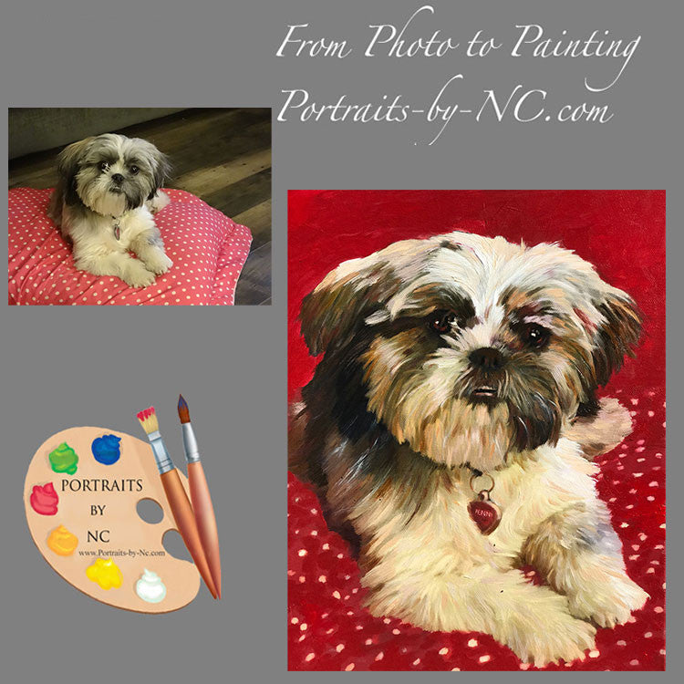 Shih Tzu Portrait from Photo 560