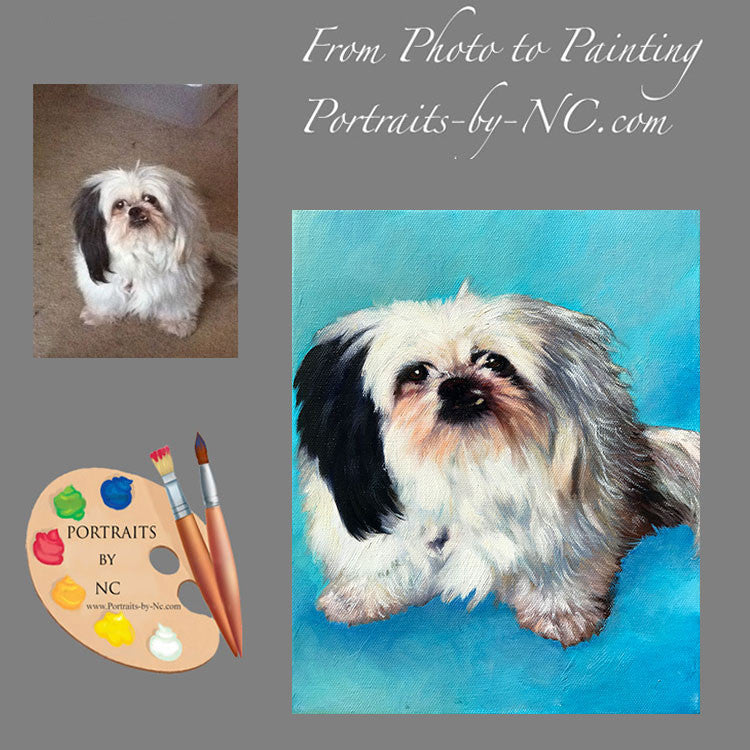Shih Tzu Dog Portrait from Photo 568