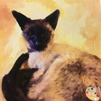 Siamese Cat Portrait 516