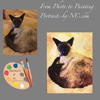 Siamese Cat Portrait from Photo 516
