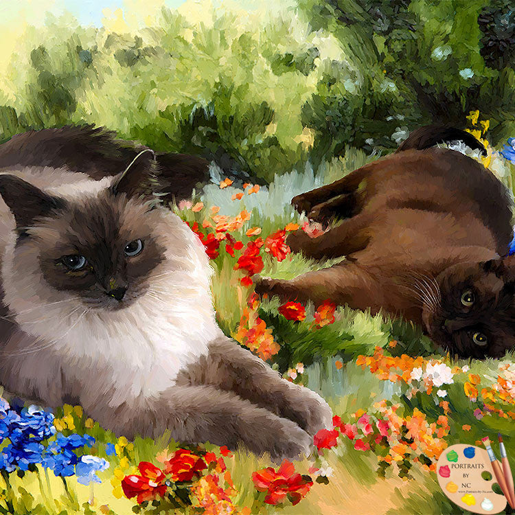 Siamese Cats Portrait 512