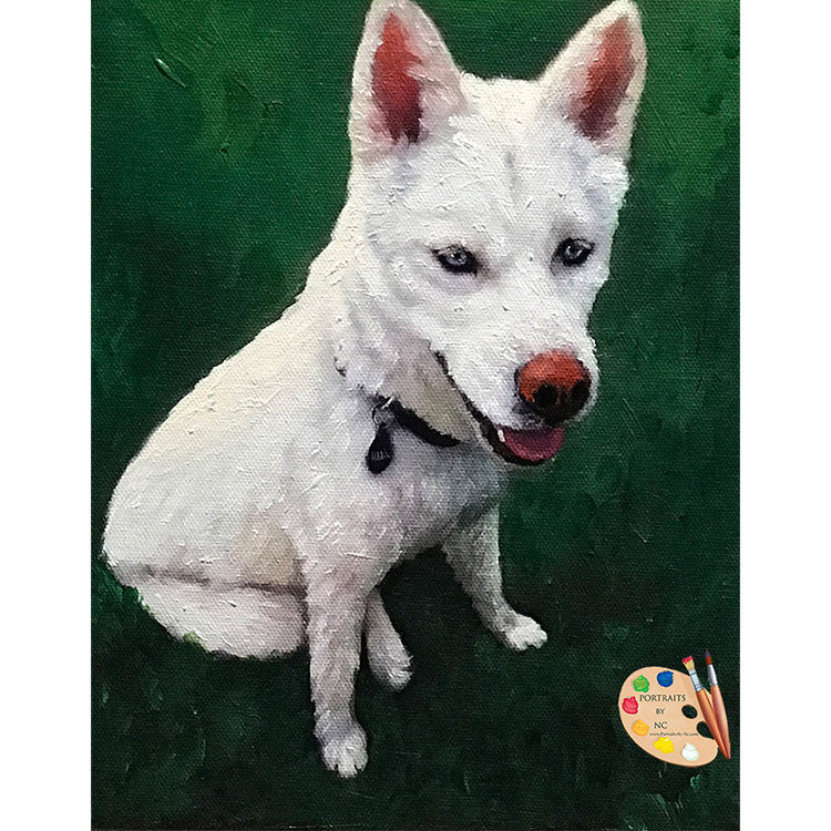 Siberian Husky Dog Painting 555