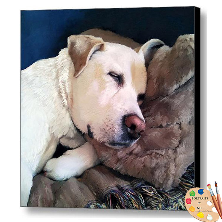 Sleeping Labrador Dog Print 327
