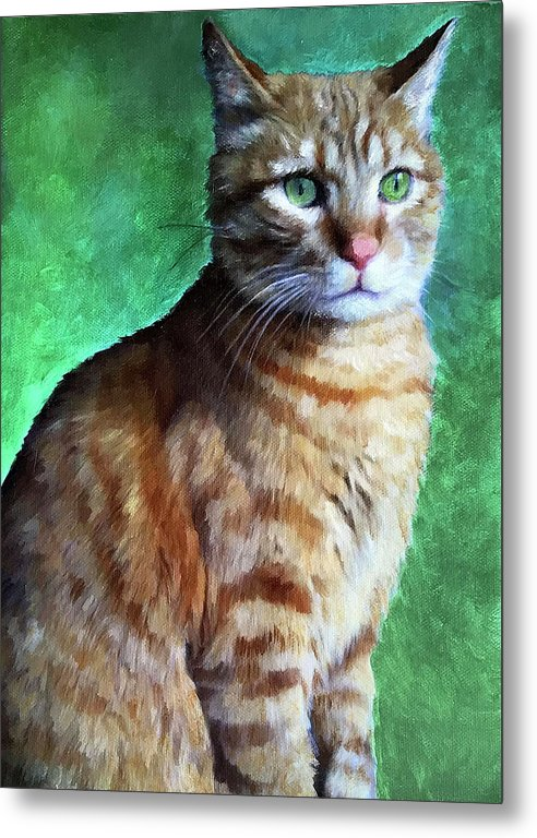 Tabby Cat - Metal Print - Portraits by NC