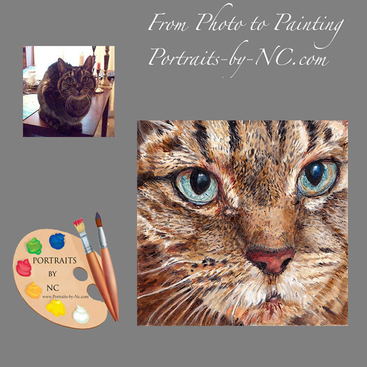 Tabby Cat Portrait from Photo 188