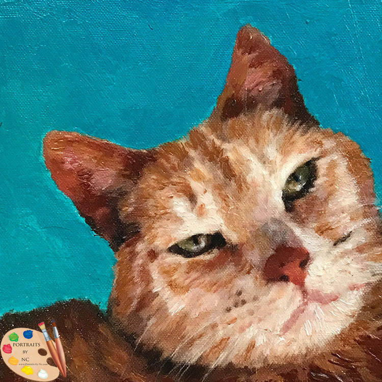 Tabby Cat Portrait 550