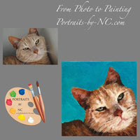 Tabby Cat Portrait from Photo 550