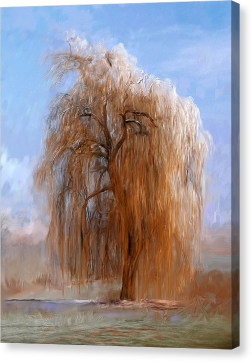 The Lone Willow Tree - Canvas Print - 299