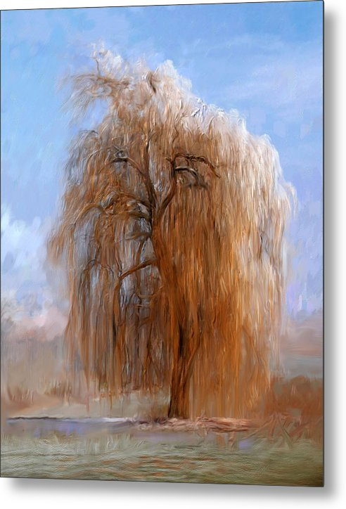 The Lone Willow Tree - Metal Print -299