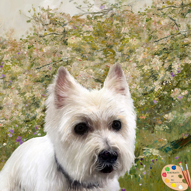 Westie Dog Portrait 351